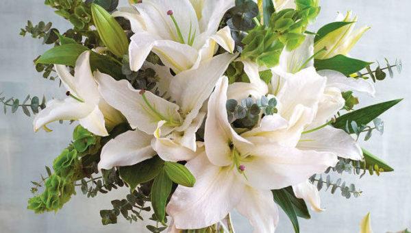 12月の誕生花をプレゼントする時のポイントと注意点