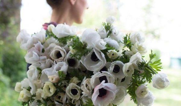 3月の誕生花をプレゼントする時のポイントと注意点
