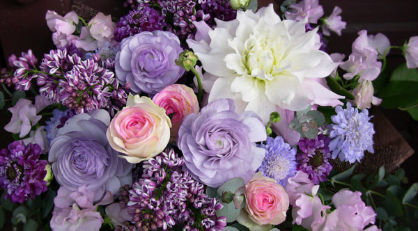 4月の誕生花をプレゼントする時のポイントと注意点