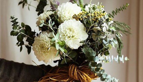10月の誕生花をプレゼントする時のポイントと注意点