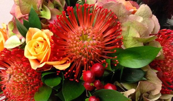 9月の誕生花とその花のロマンティックな花言葉