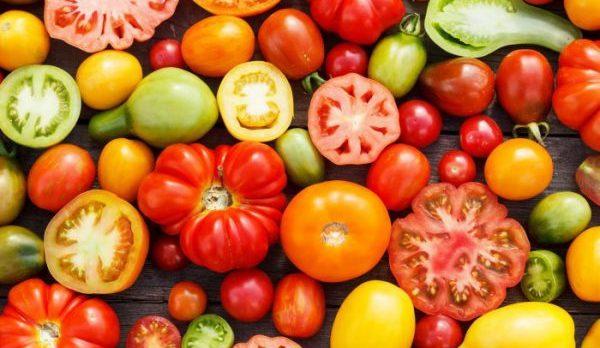 初心者でも出来る!美味しいトマトの育て方